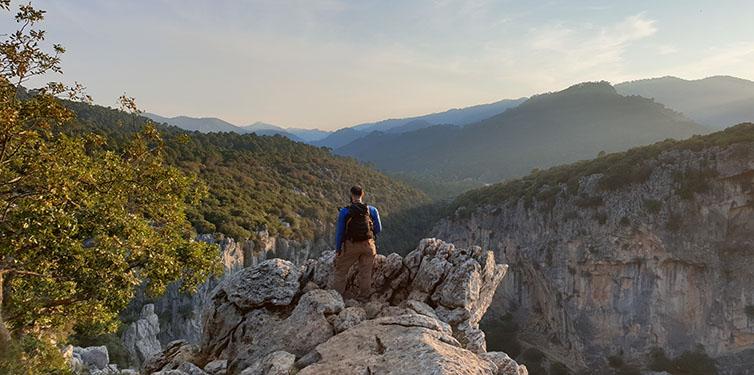 Junto al Arroyo de Linarejos (Sierra de Cazorla)