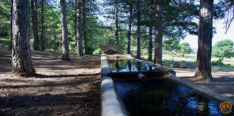 Fuente Nava del Rico (Sierra de las Villas)