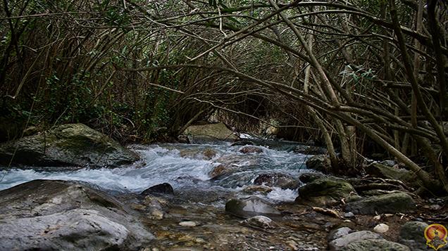 Área Recreativa del río Cuadros (Sierra Mágina)