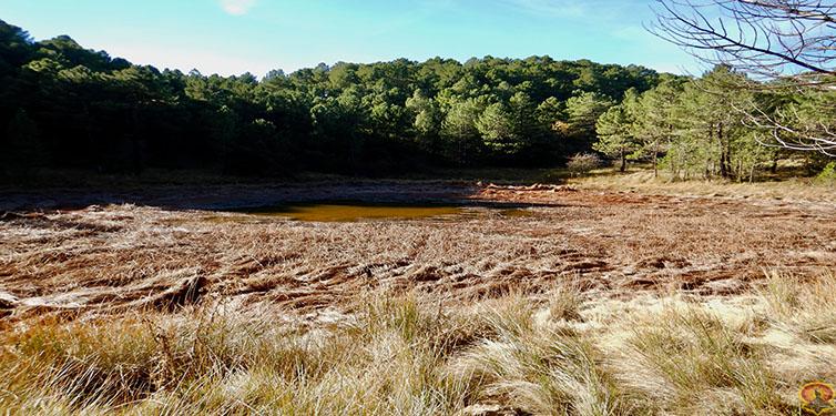 Laguna de Orcera o de la Hueta (Sierra de Segura)
